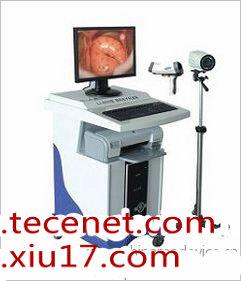 直肠阴道电子内窥镜