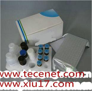 血糖检测试剂盒