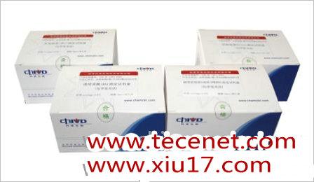 乙型肝炎病毒e抗原诊断试剂盒(化学发光法)