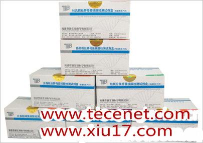 人乳头瘤病毒核酸检测试剂盒(PCR-荧光探针法)