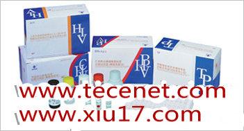 丙型肝炎病毒抗体诊断试剂盒(胶体金法)