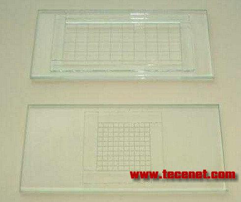 浮游生物计数框
