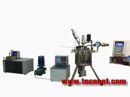 多频超声波-超临界CO2聚合反应系统