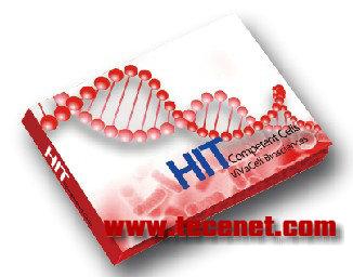 HIT-BL21(DE3)感受态细胞