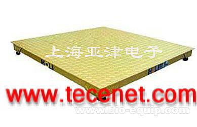 上海电子地磅秤
