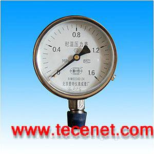 YTW耐高温压力表