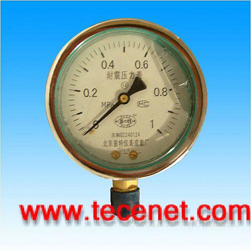 YTN耐震压力表