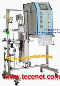 气升式不锈钢发酵罐(外循环)