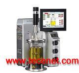 BioFlo 310高温灭菌台式发酵罐