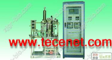 气升式生物反应器(发酵罐)(new)