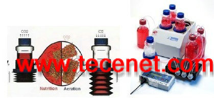 BelloCell® 高密度细胞培养系统