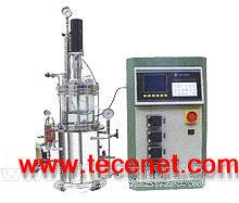 SY-3005B实验室台式发酵罐