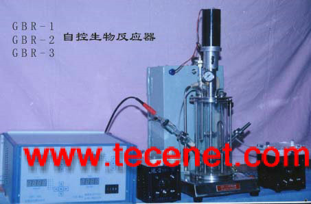自控生物反应器(发酵罐)