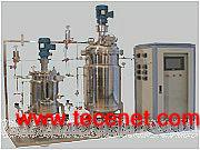KRH-PJ-30L/100L二联发酵罐