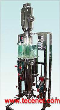气升式内环流发酵罐