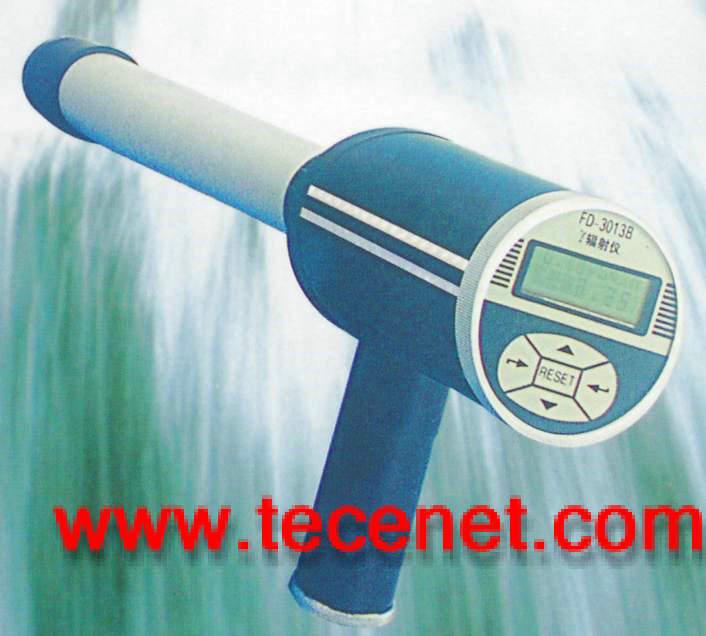 FD-3013智能化χ-γ射线检测仪