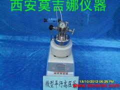微型磁力搅拌高压反应釜