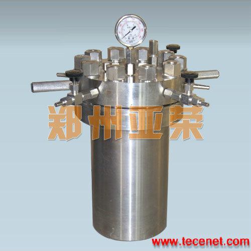 简易不锈钢高压釜,不锈钢反应釜