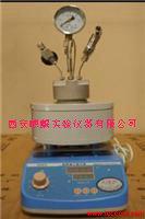 微型磁力高压反应釜,高温高压反应器