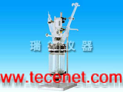 地板式双层玻璃反应釜(SF10L—50L)
