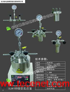 上海SLM10高压反应釜 不锈钢反应釜SLM25