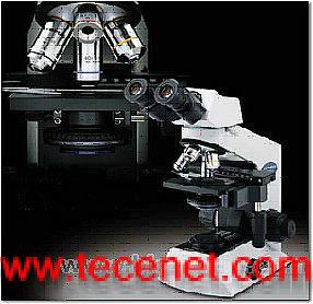 奥林巴斯CHK2临床级显微镜(库存品现货特价供应))