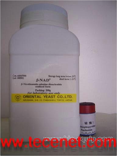 辅酶I(烟酰胺腺嘌呤双核苷酸)