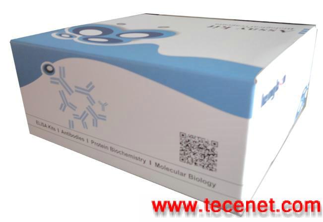 大鼠成纤维生长因子(FGF)酶免试剂盒