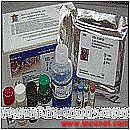 病毒/传柒病/性病检测ELISA试剂盒