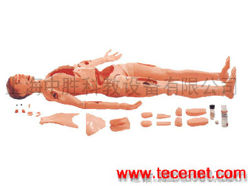 高级护理模拟人-高级全功能护理训练模拟人