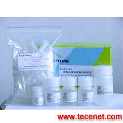 细胞/组织基因组DNA提取试剂盒 (溶液型)