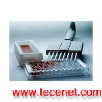 小鼠IL- 12 ( P70 )ELISA试剂盒