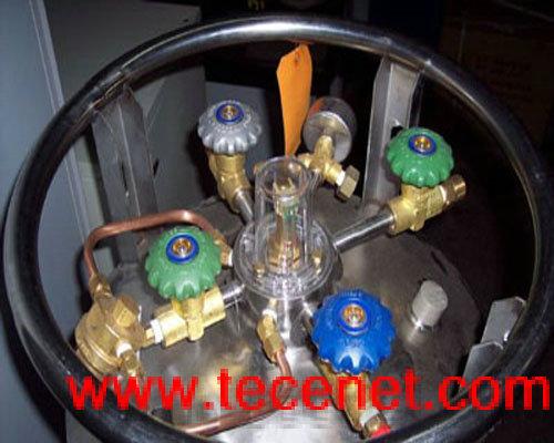 杜瓦瓶 杜瓦罐 液氮罐 低温瓶