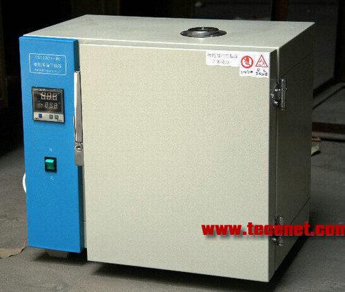 电热恒温干燥箱TST202A-2