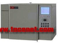 人工煤气全组份测定专用气相色谱仪
