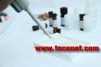 PriboLab(普瑞邦)黄曲霉毒素总量试剂盒