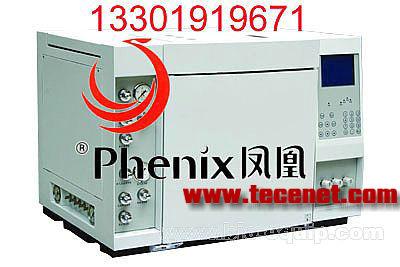 GC9310/GC112A气相色谱仪