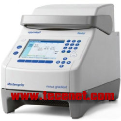 EP Mastercycler nexus PCR仪