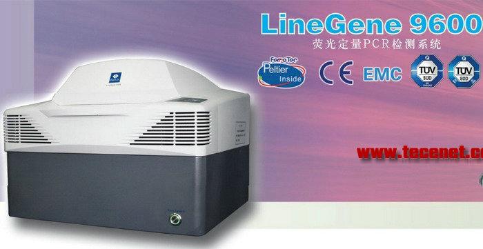 多通道检测实时荧光定量PCR仪
