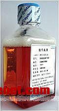Hyclone30088.03标准型胎牛血清