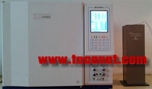 GC-9860PDD高纯气体分析专用色谱仪