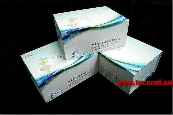 人瘦素 (Leptin)酶联免疫试剂盒