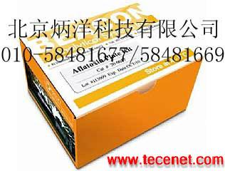 美国Beacon呕吐毒素DON检测试剂盒