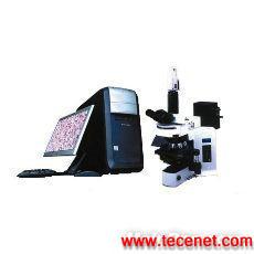 数字医学(病理)图像分析系统
