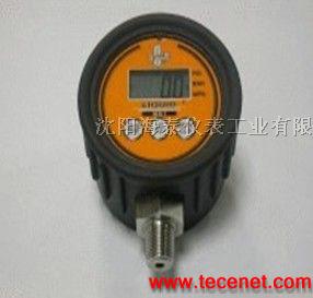 进口数字压力表 数字压力表 数字控制器