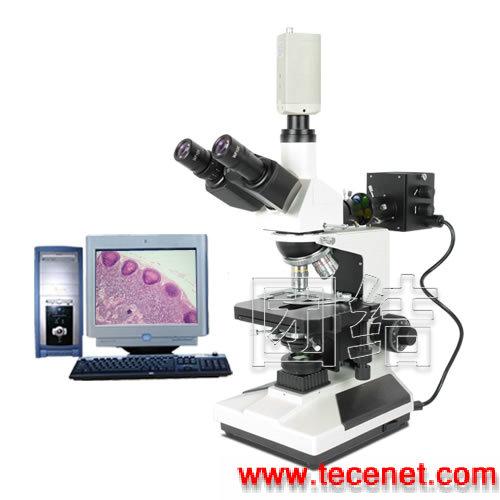透反射式实验室生物显微镜