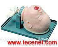 气管插管模型|心肺复苏模型