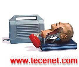 气管插管模型,心肺复苏模拟人