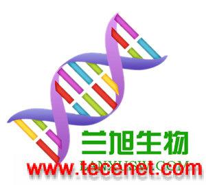 谷氨酰胺转氨酶;谷氨酰胺转胺酶