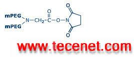 Y型甲氧基聚乙二醇琥珀酰亚胺羧酸酯 Y-NHS
